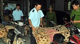 เวียดนามเพิ่มความเข้มงวดในการตรวจสอบผู้โดยสารและยานพาหนะในจุดผ่านแดน - ảnh 1