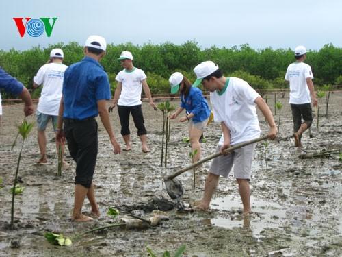 ปี 2016 เวียดนามปฏิบัติมาตรการรับมือกับการเปลี่ยนแปลงของสภาพภูมิอากาศอย่างพร้อมเพรียง - ảnh 2