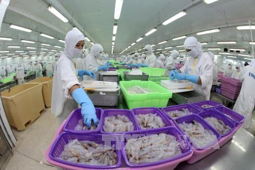 เวียดนามและสหรัฐลงนามข้อตกลงเกี่ยวกับการต่อต้านการขายทุ่มตลาดกุ้ง - ảnh 1