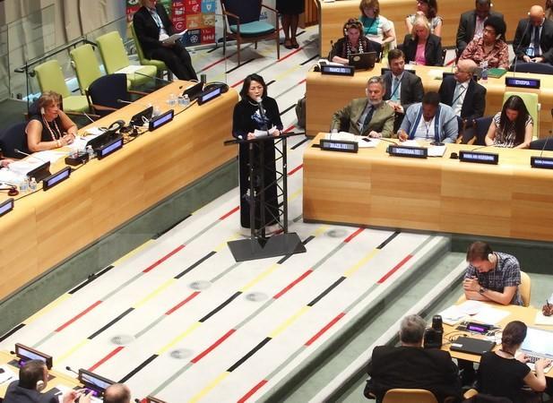 เวียดนามให้คำมั่นที่จะมีส่วนร่วมอย่างเข้มแข็งต่อภารกิจของ ECOSOC - ảnh 1