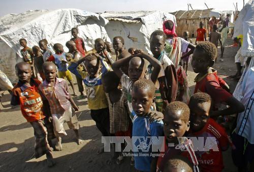 องค์กรมนุษยธรรมแห่งสหประชาชาติแสดงความกังวลเรื่องสหรัฐลดเงินอุปถัมภ์ - ảnh 1