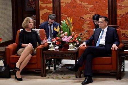 จีนและอียูสนทนายุทธศาสตร์ ณ กรุงปักกิ่ง - ảnh 1