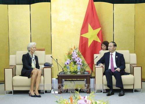 ประธานประเทศเจิ่นด่ายกวางให้การต้อนรับผู้นำเศรษฐกิจสมาชิกเอเปก - ảnh 2