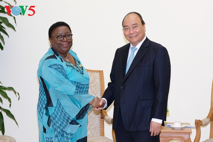 นายกรัฐมนตรีเหงียนซวนฟุ๊กให้การต้อนรับรัฐมนตรีต่างประเทศไลบีเรีย เอกอัครราชทูตแอฟริกาใต้และKEIDANREN - ảnh 1