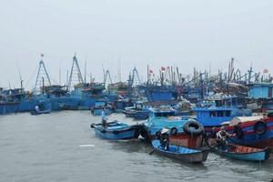 เวียดนามและจีนทำการเจรจาเกี่ยวกับเขตทะเลนอกอ่าวทะเลตะวันออกและความร่วมมือด้านที่มีความอ่อนไหวในทะเล - ảnh 1