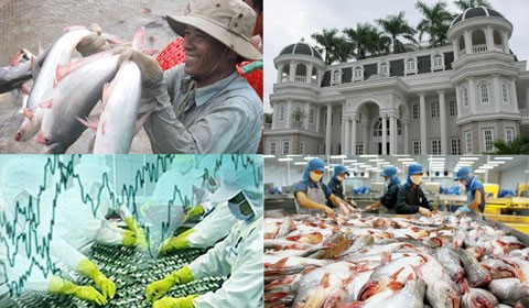 รัฐบัญญัติFarm Billของสหรัฐจะสร้างอุปสรรคให้แก่ปลาสวายของเวียดนาม - ảnh 1