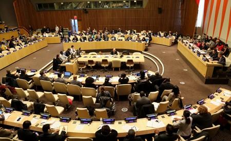 เวียดนามเป็นประธานการประชุมสนทนาระดับสูงECOSOC - ảnh 1