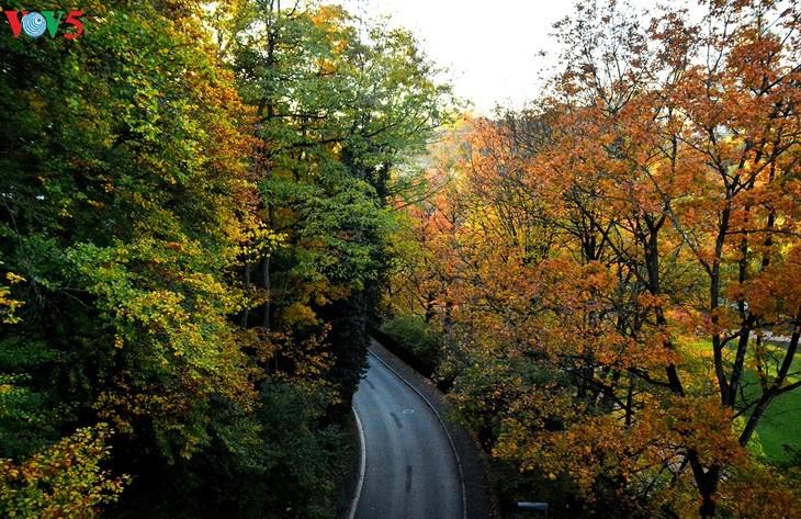 Thụy Sĩ - đất nước của trời xanh và nắng vàng - ảnh 15