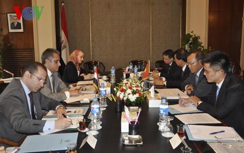 Việt Nam và Ai Cập họp tham vấn chính trị  - ảnh 1