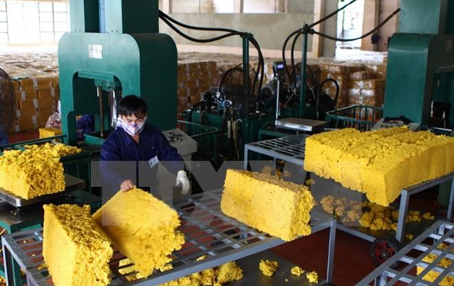Việt Nam quảng bá sản phẩm ưu thế tại khu vực Tây Nam Trung Quốc - ảnh 1