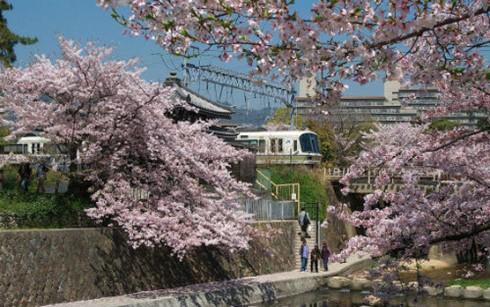 Lễ thành lập Hội Hữu nghị Nhật Bản-Việt Nam thành phố Nishinomiya - ảnh 1
