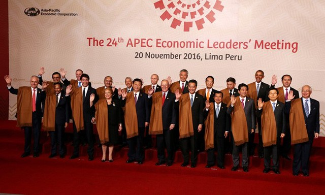 Hội nghị các quan chức cao cấp APEC lần thứ hai và các cuộc họp liên quan diễn ra tại Hà Nội - ảnh 1