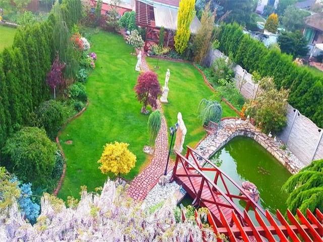 Vườn hoa tuyệt đẹp của người Việt tại Praha - ảnh 3