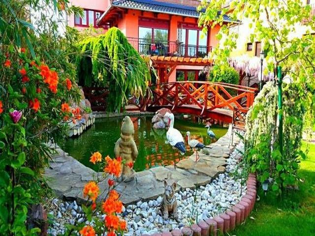 Vườn hoa tuyệt đẹp của người Việt tại Praha - ảnh 4