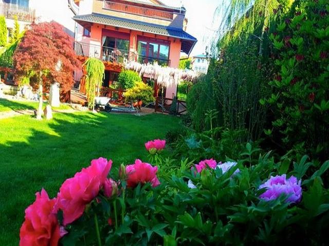 Vườn hoa tuyệt đẹp của người Việt tại Praha - ảnh 6