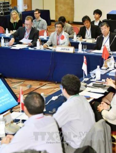 Các nước tiếp tục thảo luận về TPP không có sự tham gia của Mỹ - ảnh 1