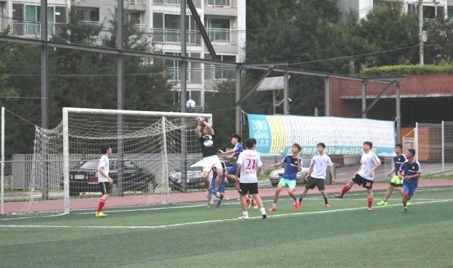 Khai mạc Đại hội Thể dục thể thao của sinh viên Việt Nam tại Hàn Quốc năm 2017 - ảnh 6