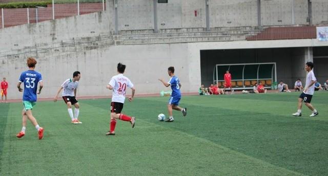 Khai mạc Đại hội Thể dục thể thao của sinh viên Việt Nam tại Hàn Quốc năm 2017 - ảnh 5