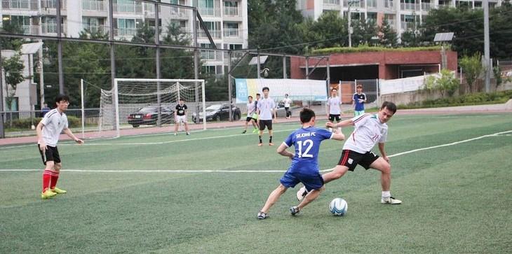Khai mạc Đại hội Thể dục thể thao của sinh viên Việt Nam tại Hàn Quốc năm 2017 - ảnh 4