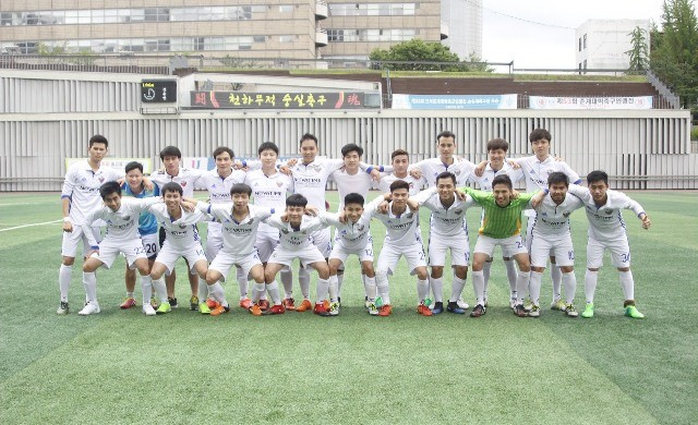 Khai mạc Đại hội Thể dục thể thao của sinh viên Việt Nam tại Hàn Quốc năm 2017 - ảnh 7