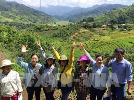 Chung tay nâng cao chất lượng dịch vụ du lịch Việt Nam - ảnh 1