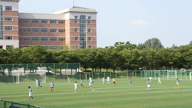 Sôi nổi Đại hội thể dục thể thao sinh viên VN tại Hàn Quốc lần thứ 10 - ảnh 3
