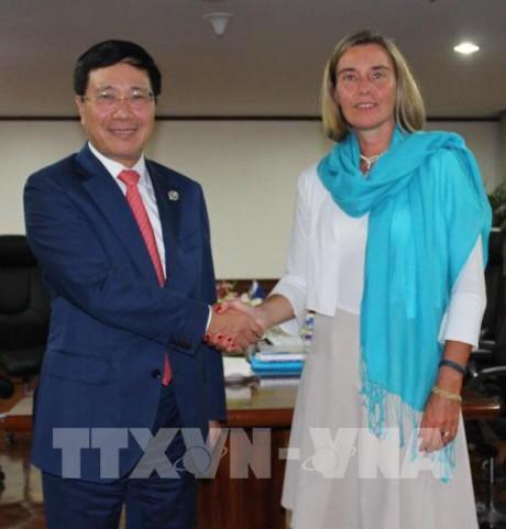 Việt Nam tăng cường hợp tác với các quốc gia và EU - ảnh 1