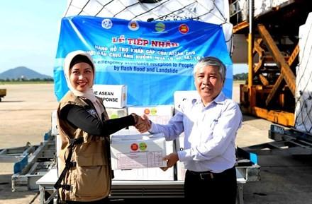 Việt Nam tiếp nhận 30 tấn hàng cứu trợ đồng bào vùng thiên tai - ảnh 1