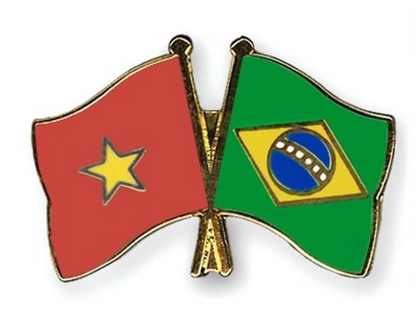 Ra mắt Nhóm nghị sĩ hữu nghị Brazil - Việt Nam nhiệm kỳ 2017-2019 - ảnh 1