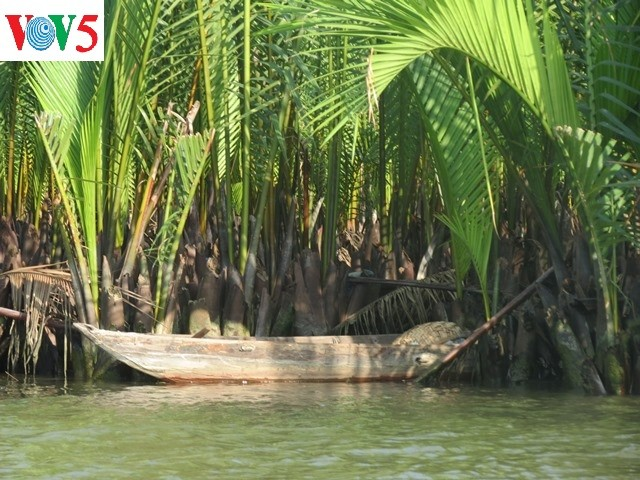Phát triển du lịch sinh thái thân thiện tại khu du lịch rừng dừa Bảy Mẫu - ảnh 5