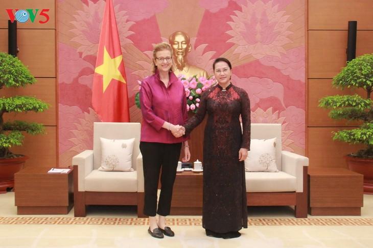 Chủ tịch Quốc hội Nguyễn Thị Kim Ngân tiếp Giám đốc Quốc gia mới UNDP tại Việt Nam - ảnh 2