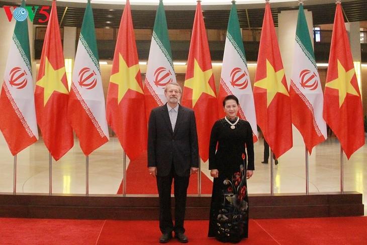Hội đàm cấp cao Việt Nam - Iran - ảnh 1
