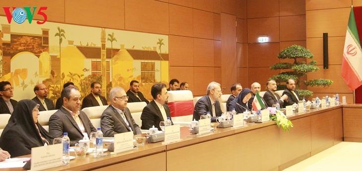 Hội đàm cấp cao Việt Nam - Iran - ảnh 3
