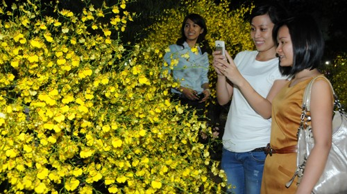 2012 spring flower festival in Ho Chi Minh City  - ảnh 1