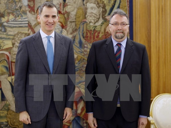 In surprise move Spanish parties restart coalition negotiations  - ảnh 1
