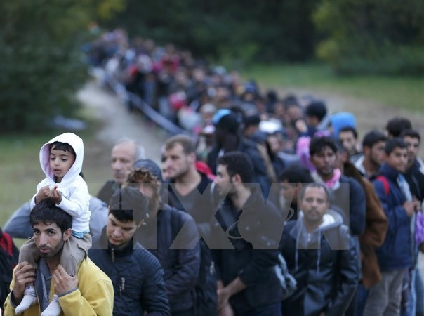Migrant issue: Belgium to receive the first 20 Syrian refugees from Greece - ảnh 1