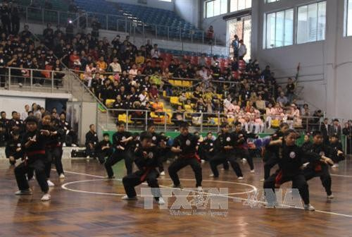 26th National Traditional Martial Arts Championship opens - ảnh 1