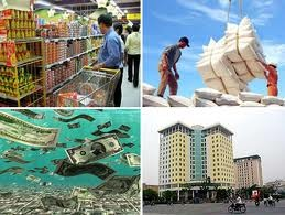 Thành tựu xoá đói, giảm nghèo của Việt Nam năm 2011 - ảnh 2