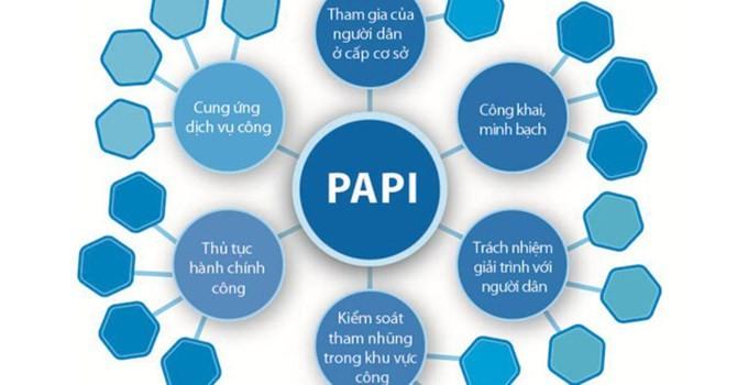Chỉ số PAPI tiếp tục tạo ra những hiệu ứng đáng kể ở cấp tỉnh và cấp quốc gia - ảnh 1