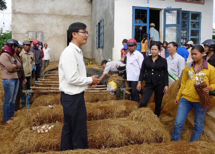 ActionAid Việt Nam hỗ trợ người nghèo xây dựng mô hình sinh kế bền vững  - ảnh 1