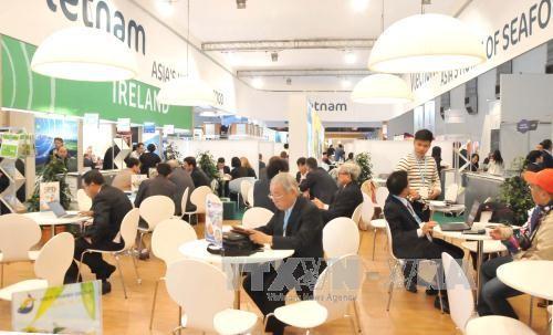 Phái đoàn kinh tế vùng Flanders-Bruxelles (Bỉ) tìm kiếm cơ hội hợp tác đầu tư tại Việt Nam  - ảnh 1