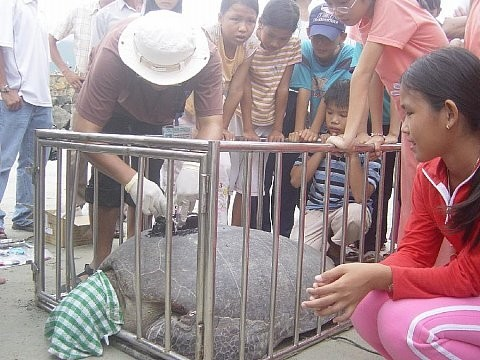 โกนด๋าว-แหล่งท่องเที่ยวที่ลือชื่อของเวียดนาม - ảnh 7