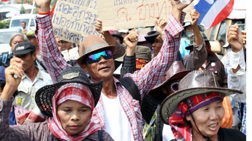 ชาวนาไทยงดการชุมนุมประท้วง ณ กรุงเทพฯ - ảnh 1