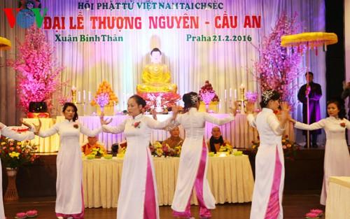 Sẽ tổ chức Đại lễ kỷ niệm 10 năm thành lập Hội phật tử Việt Nam tại CH Séc - ảnh 1