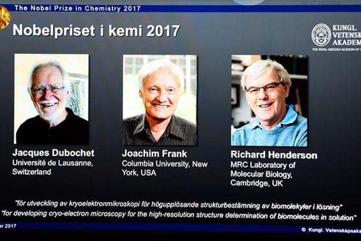 Nobel Hóa học 2017 vinh danh công trình phát triển kính hiển vi điện tử nghiệm lạnh - ảnh 1