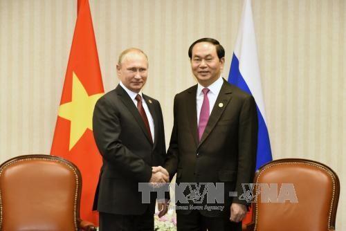 Việt Nam cảm ơn Nga về viện trợ khắc phục bão Damrey - ảnh 1