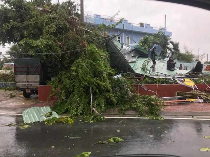 Khẩn trương tái thiết sau cơn bão Damrey - ảnh 1