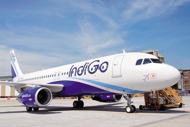 Hãng hàng không lớn nhất Ấn Độ lên kế hoạch mở đường bay tới Việt Nam  - ảnh 1