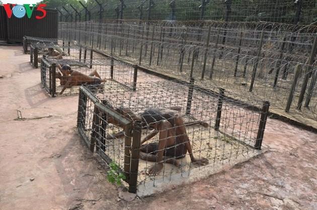 Phu Quoc prison - ảnh 1
