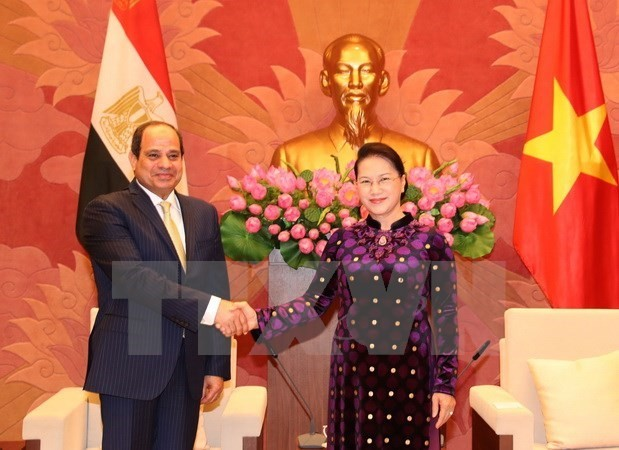 Egypt wants to boost cooperation with Vietnam - ảnh 3
